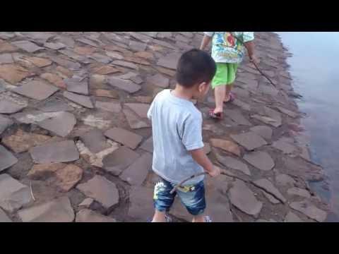 Bo đi chơi lòng hồ Thác Mơ