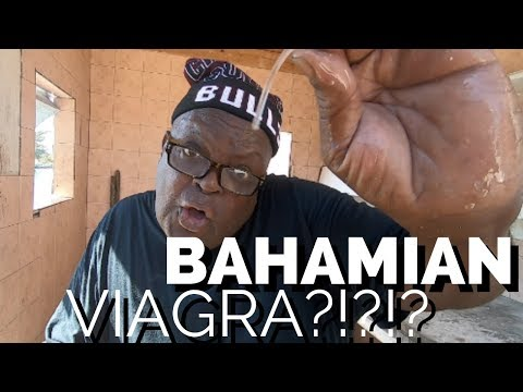 Bahama Mama Pt 1: The Conch Queen | Live, Love, Travel Now