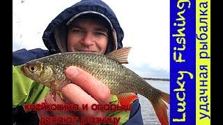 Ловля на КЛЕЙКОВИНУ, рыбалка в марте I Шквальный ветер и град