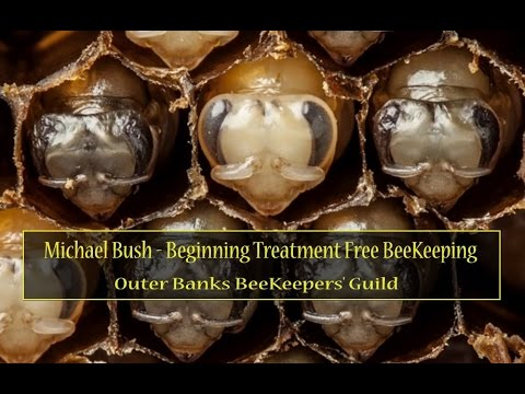 Michael Bush BeeKeeping Part 1   Outer Banks Web