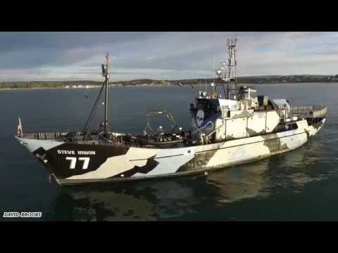 MV Steve Irwin the ship