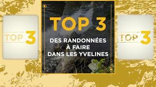 Yvelines | Top 3 des randonnées à faire dans les Yvelines