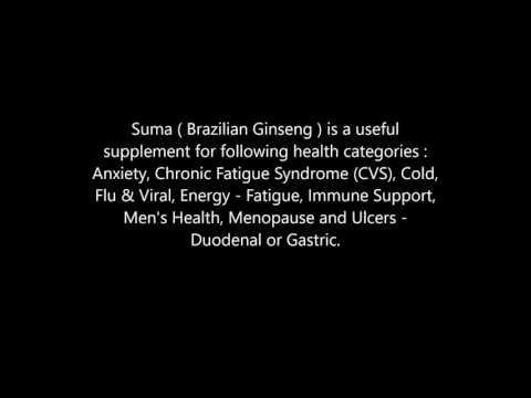 Suma  Brazilian Ginseng  health benefits
