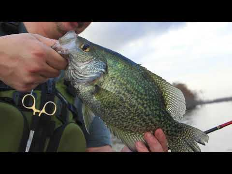 Arkansas Wildlife - S4.E3, Crappie Fishing, Crappie Research And Crappie Cooking