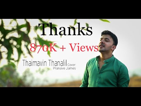 Thaimavin Thanalil (Oru Yathramozhi)| Cover | Pranave James
