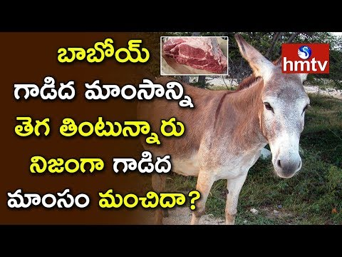 Donkey Meat Good For Health - Is It Real Or Fake? | Doctors About Donkey Meat | hmtv
