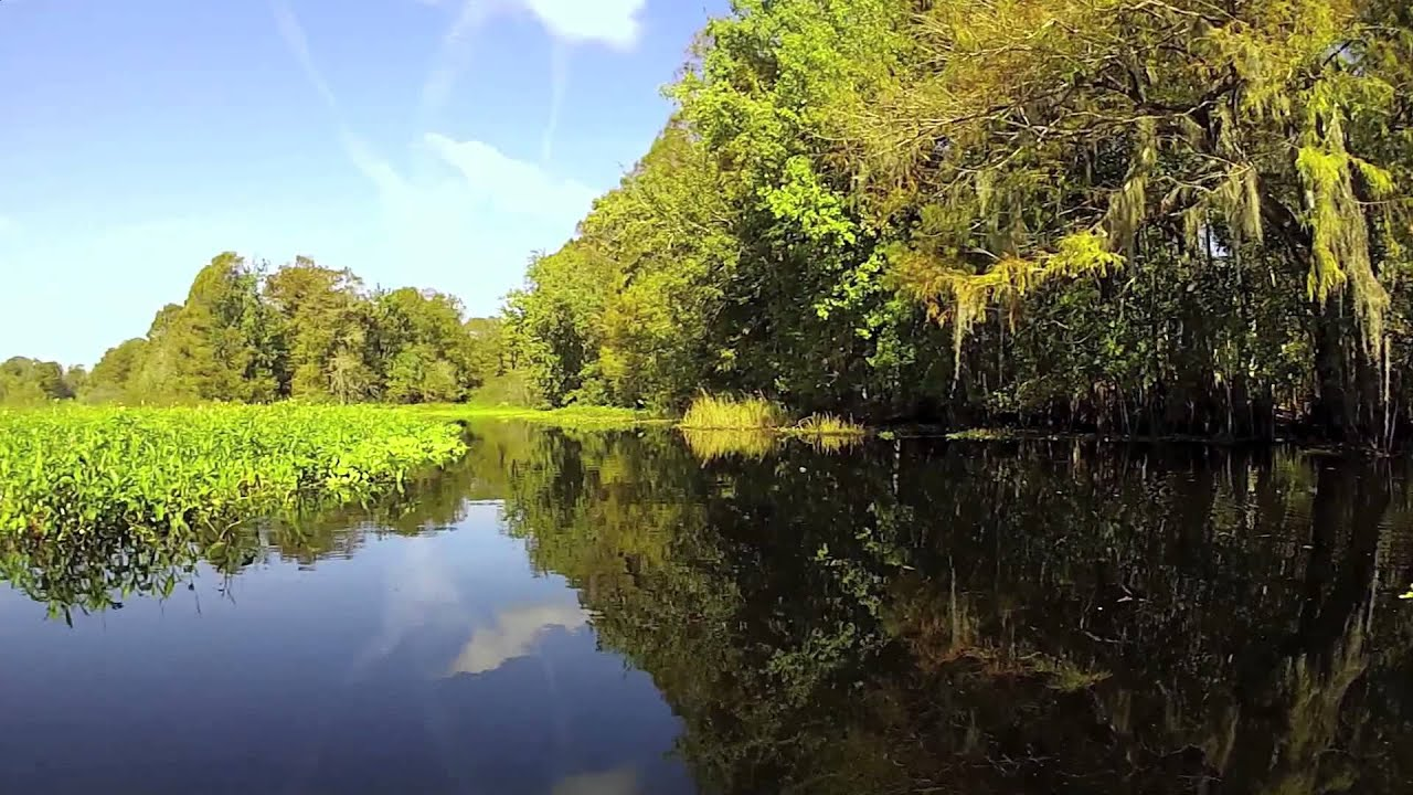 Fishing on the Withlacoochee River