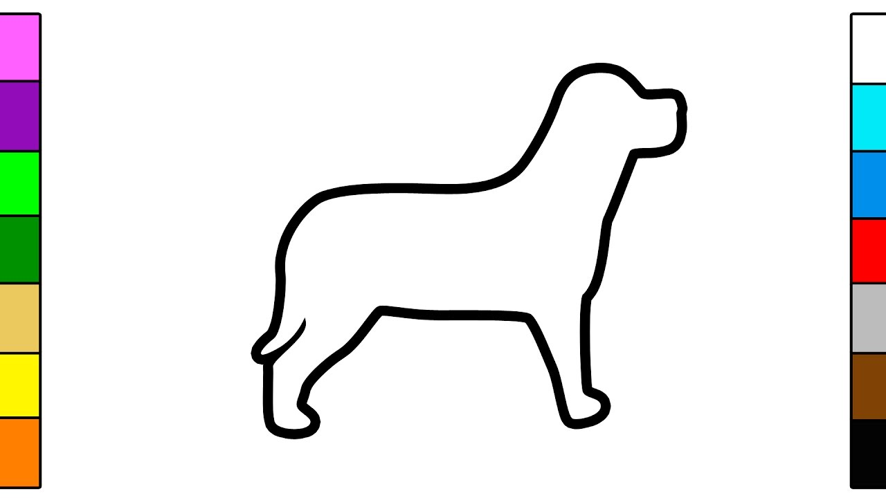 learn colors for kids with doggie dog coloring pages youtube