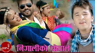 "New Hit Lok Dohori Song || Nigaliko Choya Le ""निगालीको चोयाले""|| Bandana Pandey & Bhagirath Chalaune"