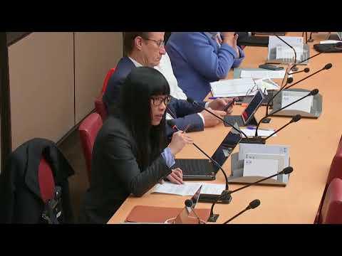 Stéphanie DO-Commission économique : M.Gilles de Margerie,commissaire de France Stratégie-10/04/2019