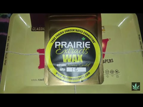 KONA GOLD WAX - Prairie Extracts - LEAFLY CONCENTRATE STRAIN REVIEW