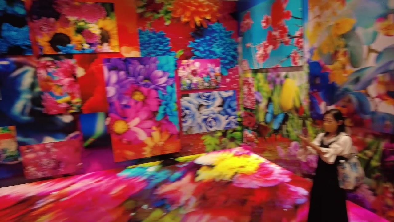 「蜷川実花展-虚構と現実の間に-」極彩色の空間と静謐な時間の流れが交錯 上野の森美術館で11月14日まで