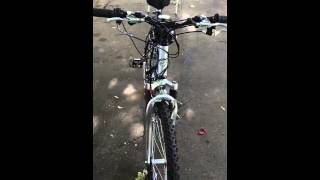 80 cc GIANT motorized bicycle FOR SALE