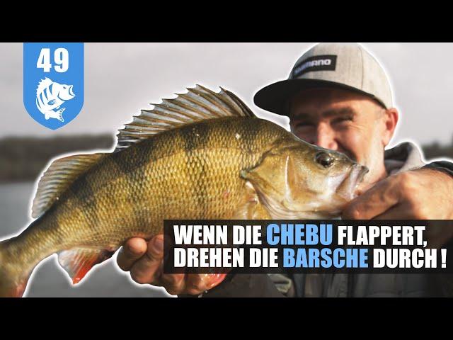 Herbst-Barsch: Steinpackung + CHEBUrashka + Krebs = DICKBARSCH