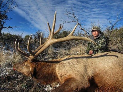 2018 Zuni Tribal Late Bull Elk Hunt - Alton Tucson
