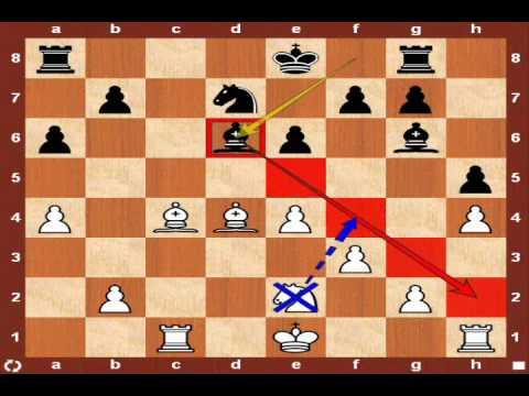 World Chess Championship 2010: Topalov vs. Anand – Game 5