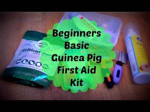 Beginners Basic First Aid Kit for Guinea Pigs