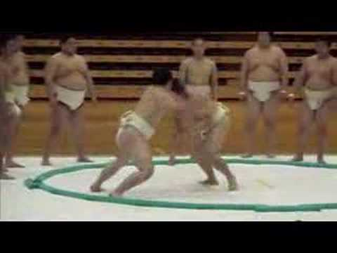 Nittaidai Sumo demonstration 2007