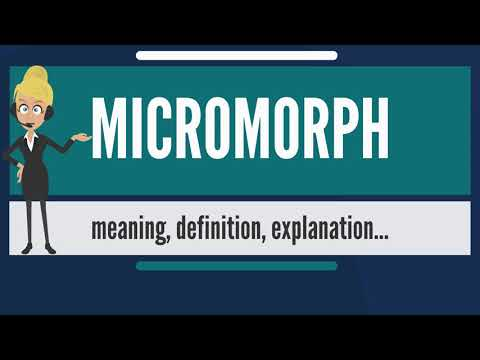 What is MICROMORPH? What does MICROMORPH mean? MICROMORPH meaning, definition & explanation