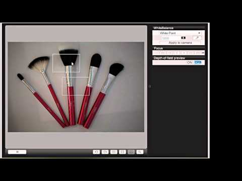 Precise Focus Adjustments Using Canon Live View Remote Shooting