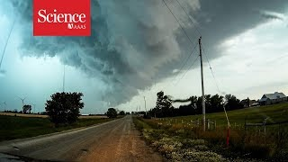 Thunderstorm-triggered asthma attacks put under the microscope in Australia