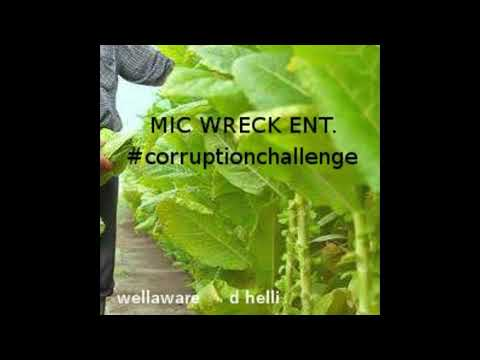 Mic Wreck Corruption Challenge D. Helli