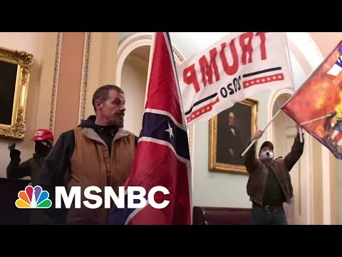 Man Who Broke Into Capitol With Confederate Flag Appears In Court | MSNBC