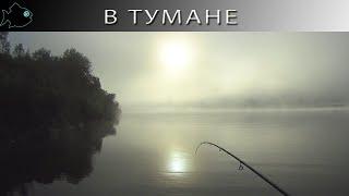 Утренний джиг c FORSAGE MILITARY окунь в тумане последняя рыбалка лета 2021 Северная Двина