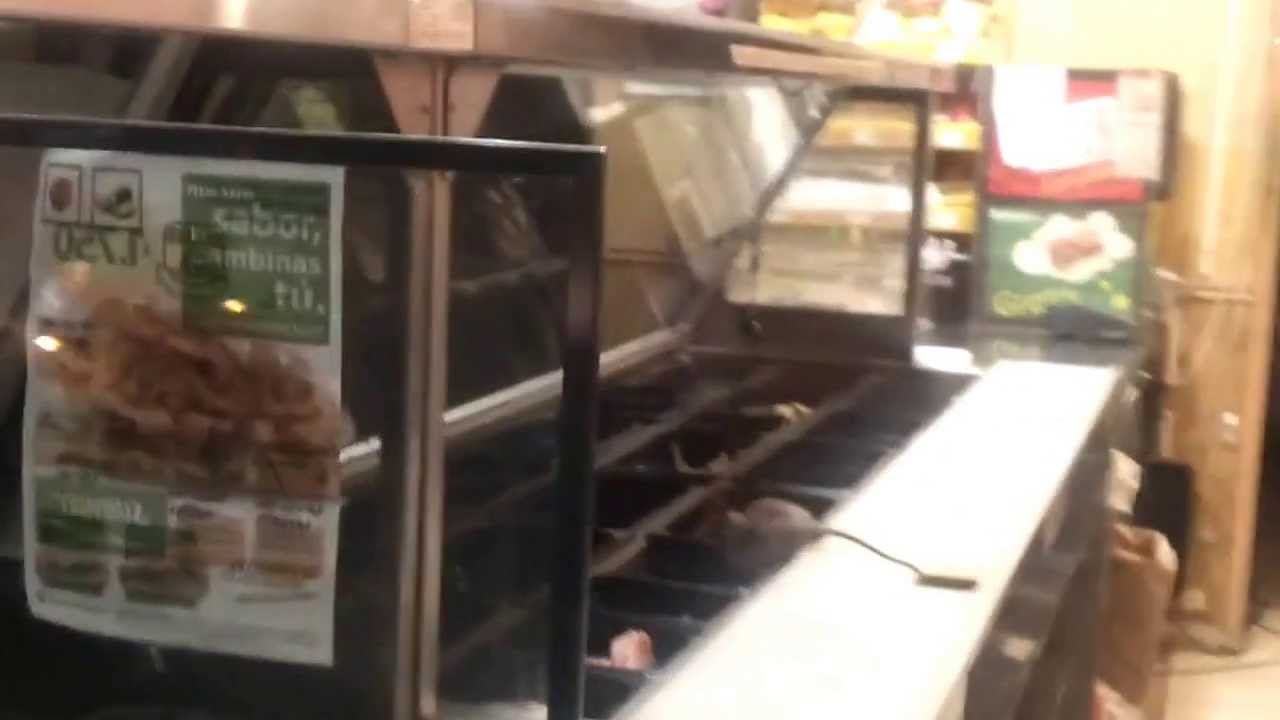 Rat At Subway Restaurant  YouTube