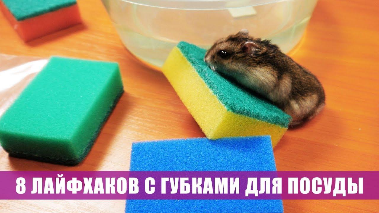 Алиэкспресс Губка для чистки сковородок - YouTube