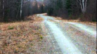The dangers of the Northern Maine Woods