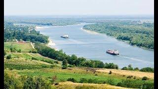 Риболовля для душі в Семикаракорске(Сьомаки). Рибалка і відпочинок на природі. Божевільні дії сазана!