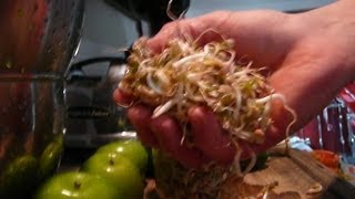 How To Juice Mung Beans Recipe Thumbnail