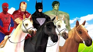 Horse Racing Videos: Ironman Captain America Hulk Spiderman Horse Race | Cartoons for Children