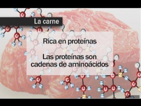 Educatina biologia protein as para bajar de peso