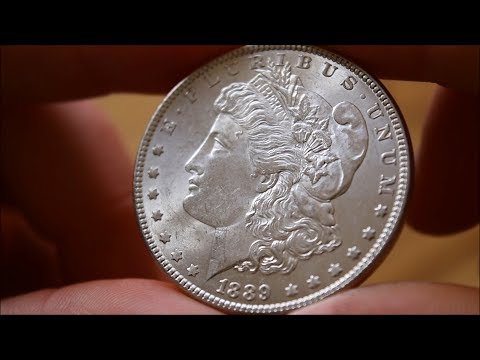 The Morgan Dollar - In Focus Friday - Episode 72!