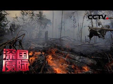 《深度国际》亚马孙雨林大火烧出了什么 20190907 | CCTV中文国际