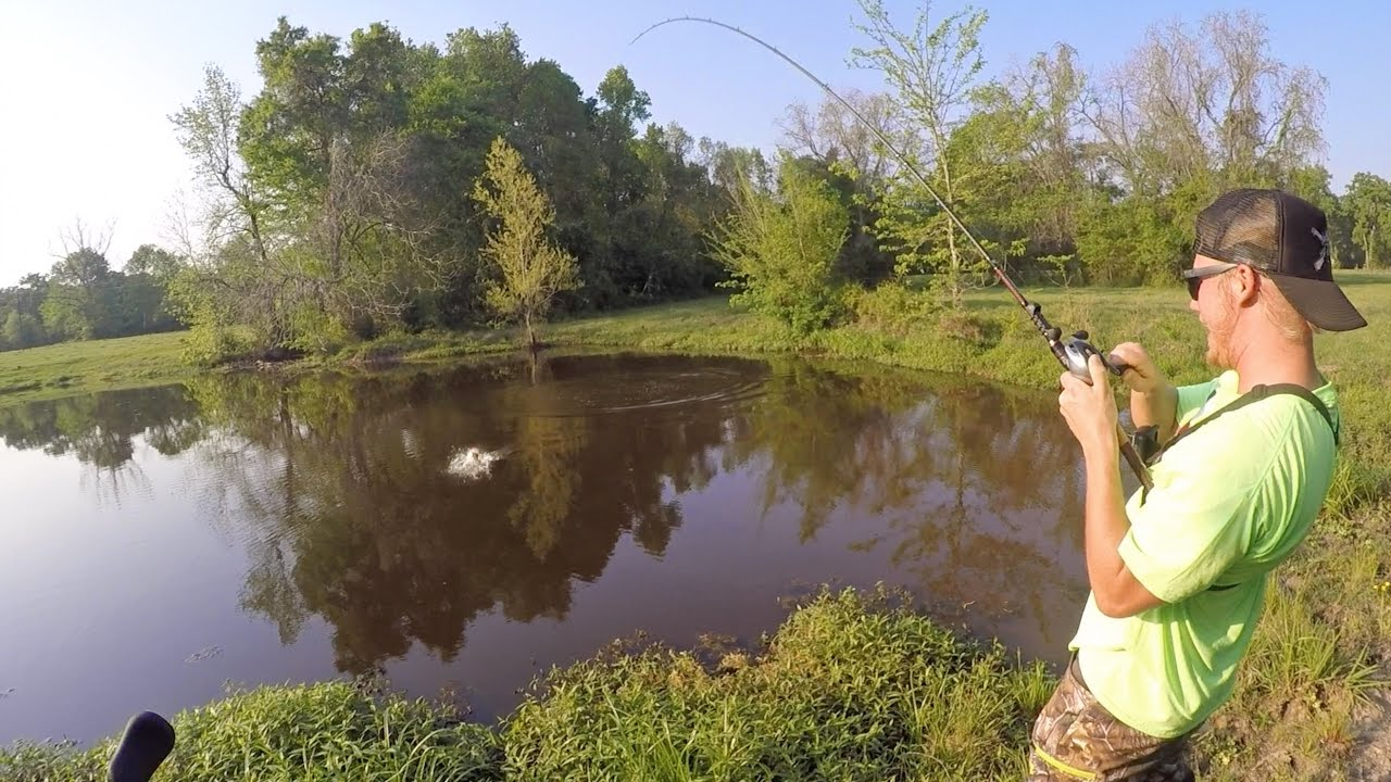 Bass fishing farm ponds with outlaw youtube for Bass fishing ponds