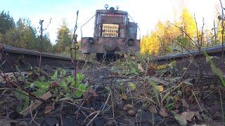 Ищу места для копа. Металл в лесу есть, но его надо найти.