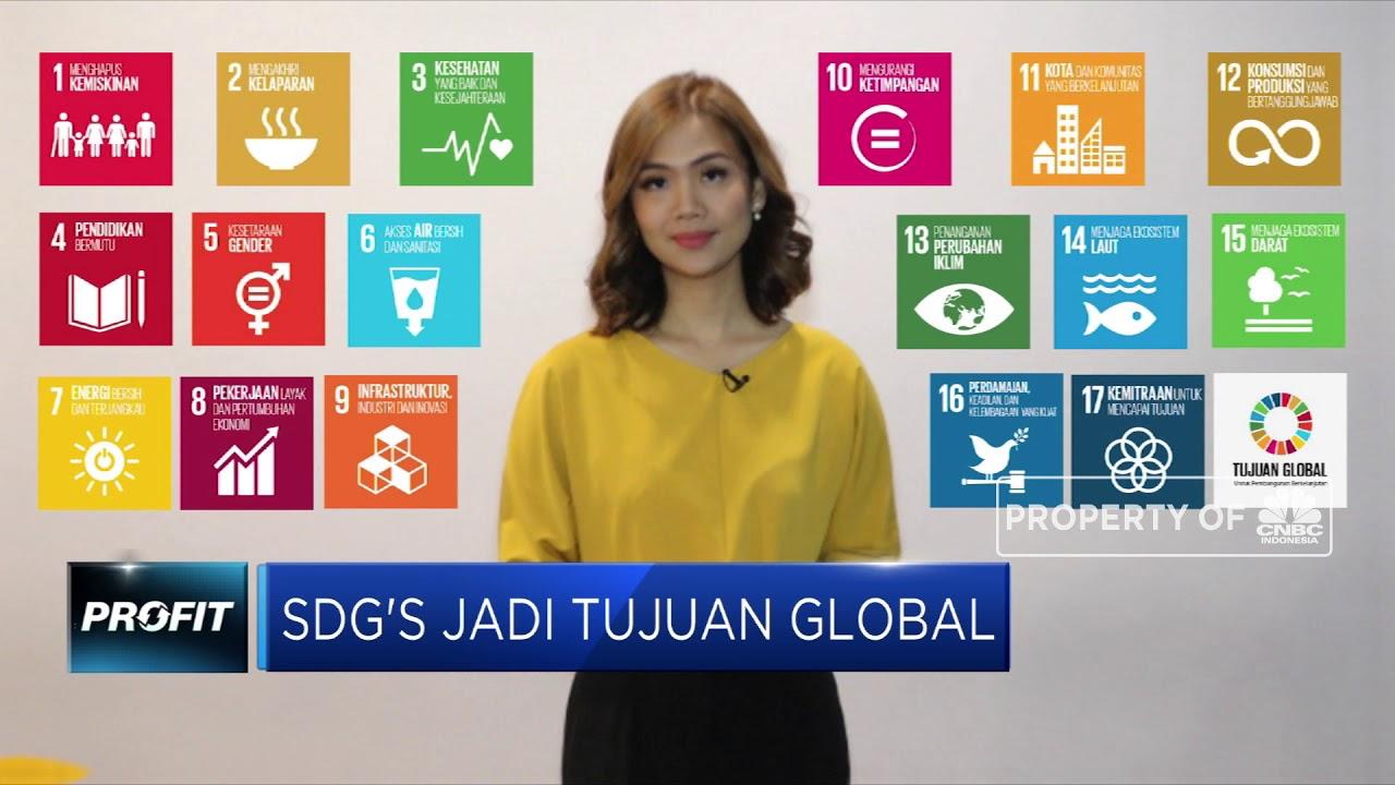 Apa Itu Sustainable Development Goals?