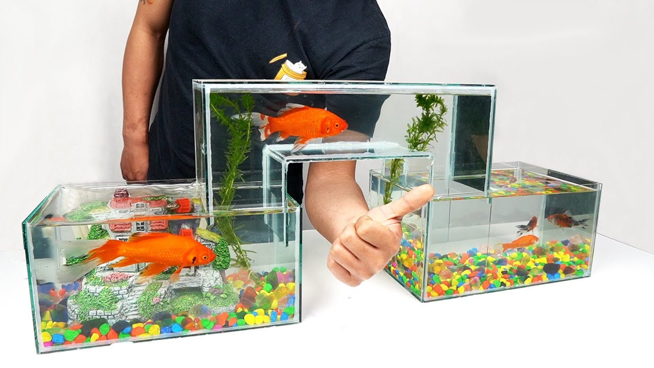How to Make Unique Multi Level Glass Aquarium at Home
