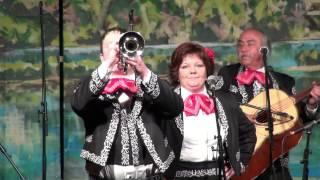 Mariachi Fiesta en Jalisco-Novale La Pena (v živo)