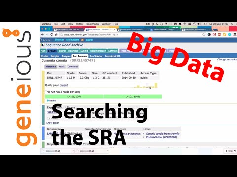 Searching and verifying NCBI SRA sequences suited for mitogenome assembly (Part 2)
