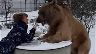 Популярное видео приколов про Животных на YouTube № 2