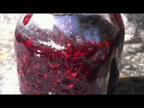 Красная смородина - Полезные и опасные свойства красной