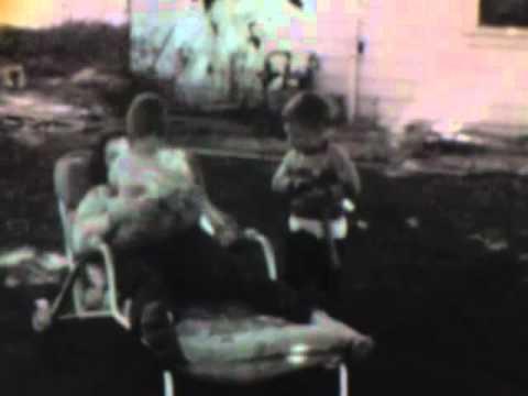My Kingdom - Echo & The Bunnymen mp3