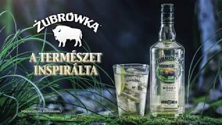 Video Zubrowka Vodka download MP3, 3GP, MP4, WEBM, AVI, FLV Agustus 2018