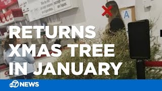 Video Man irate after Santa Clarita Costco lets woman return dead Christmas tree in January download MP3, 3GP, MP4, WEBM, AVI, FLV Juli 2018