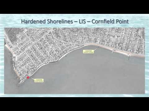 Living Shorelines: Will They Work in Old Saybrook?