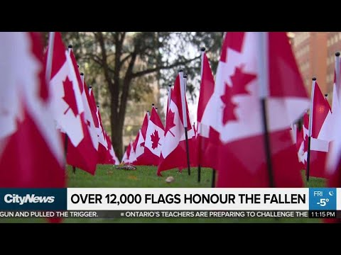 Canadian Flags Honour The Fallen